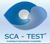 SCA Test